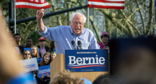 Bernie Sanders Vows to Legalize Marijuana (If Elected President) – ConnectIn420